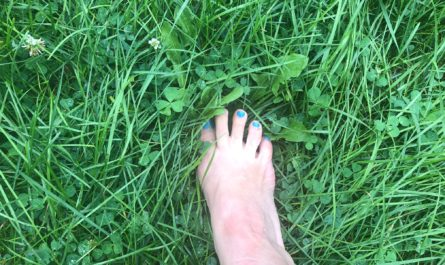 Summer is a time for your toes in the grass and the sun on your face